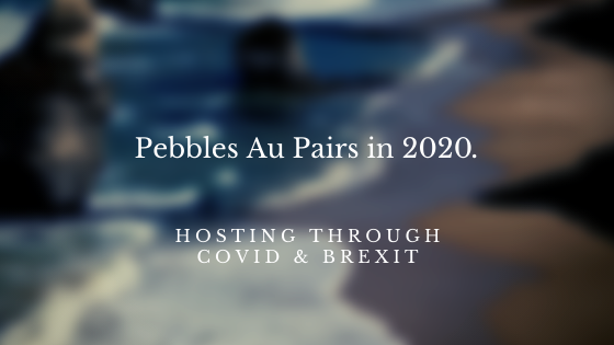 Pebbles Covid/Brexit update